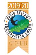 David-Bellamy